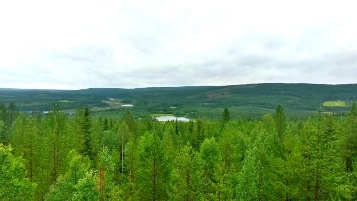 Laponie Finlandaise, l'éte